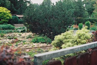 Juli:  Anfahrt Garten